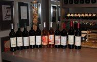 Атеље вина Шапат – Винарија која промовише уметност