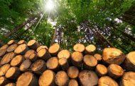 """Позив на Округли сто """"Потенцијали Војводине за производњу енергије из биомасе"""""""