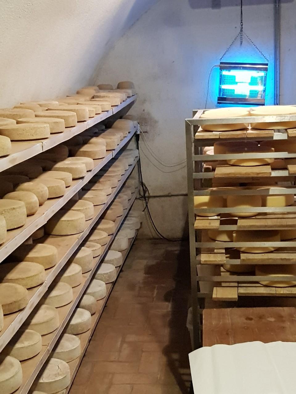 Putevima sira kroz Mađarsku